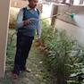 Prime Pest Control-Kolkata-Pest Control