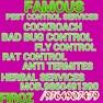Famous Eco Friendly Pest Control-Pimpri Chinchwad-Pest Control