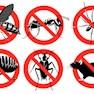 Abhinav Pest Control-Pimpri Chinchwad -Pest Control