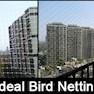 Ideal Pest Control-Pune-Termite Control
