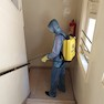 Mumbai Pest Control Services-Mumbai-Bed Bugs Control