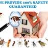 Sanjeevi Pest Control Service-Chennai-Pest Control
