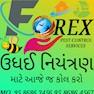 Forex Pest Control Service-Ahmedabad-Termite Control
