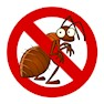 J.K. PEST CONTROL-Chennai-Termite Control