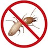 Pestaid Inc.-Delhi-Pest Control