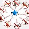 Sai Pest Services-Hyderabad-Pest Control