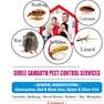 shree samarth pest control services-Thane-Pest Control