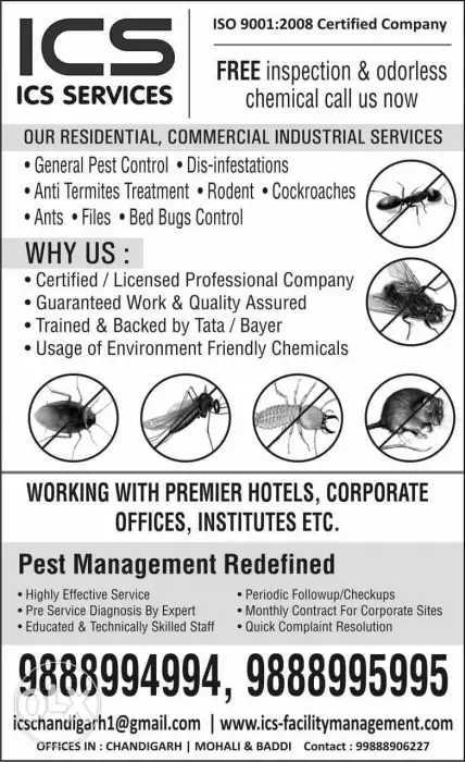 ICS Pest Control Services in Manimajra, Chandigarh-160101