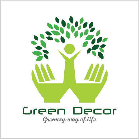 Green Decor Delhi Based Best Online