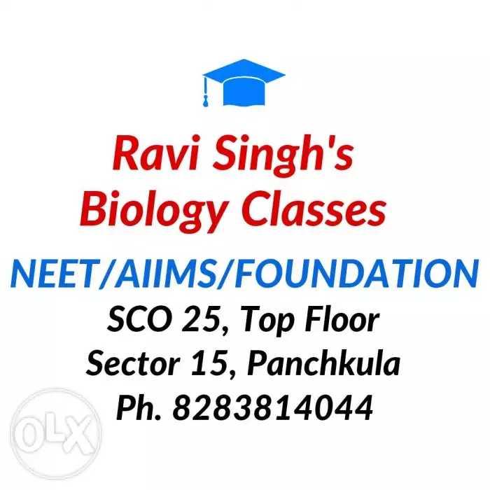 Ravi Singh in Sector 15, Panchkula-134113   Sulekha Panchkula