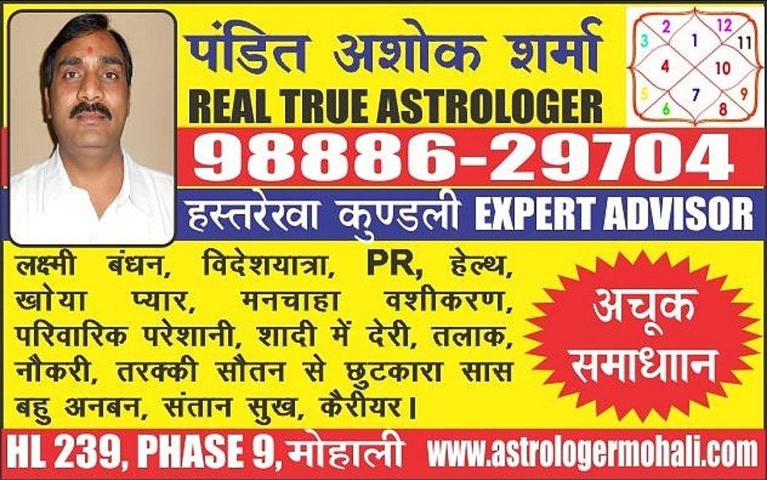 Best astrologer in mohali pin