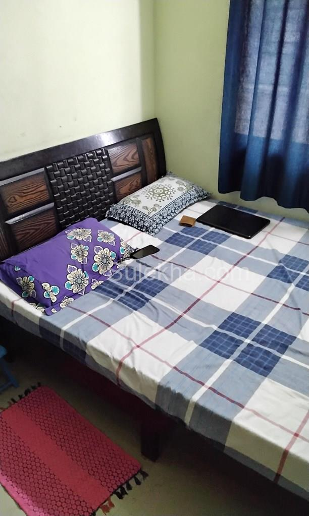 Roommates in K R Puram, Bangalore, Sharing Flats Near Me ...
